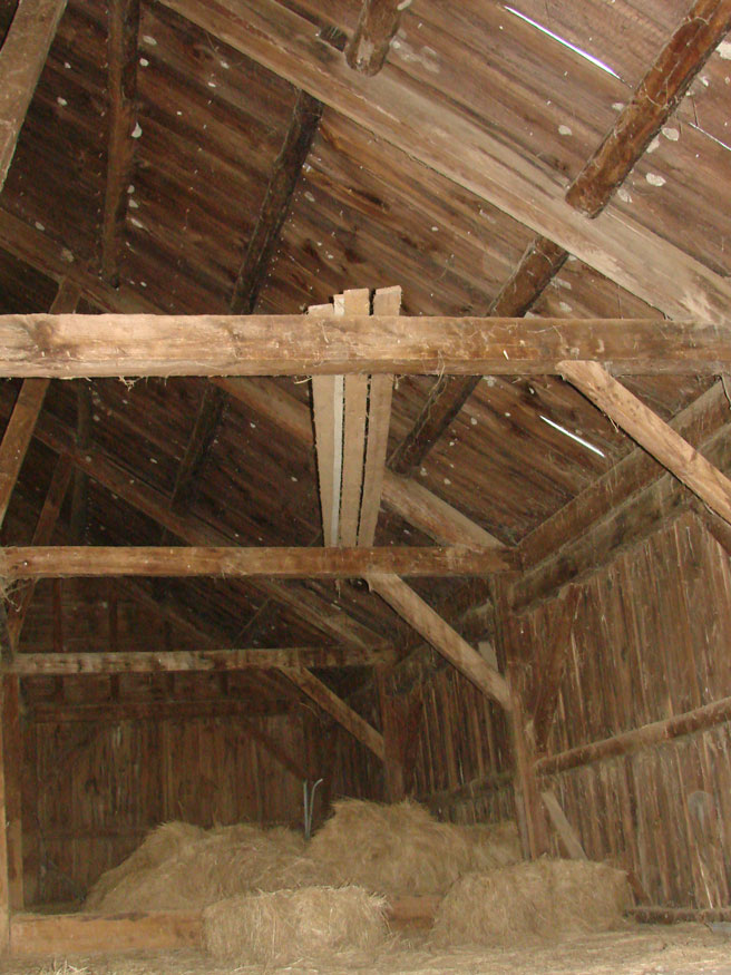 Frame Roof Structure